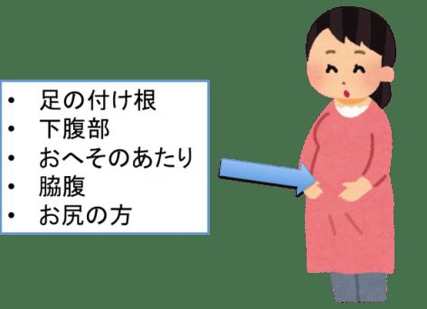 妊娠中期(5〜7ヶ月)の胎動の位置は?