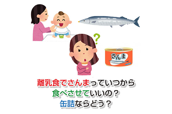 Pacific saury in baby food Eye-catching image