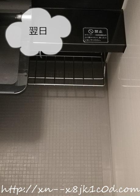 浴室の床を磨いた翌日