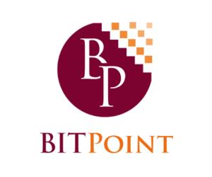 ビットポイント(BITpoint)300×250_ロゴのみ
