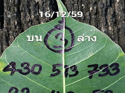 เลขจากใบโพธิ์ 16 ธ.ค 2559 เลขเด็ดงวดนี้