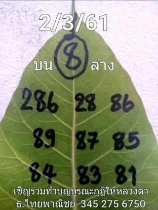 เลขใบโพธิ์2/3/61, เลขใบโพธิ์2-3-61, เลขใบโพธิ์2 มีนาคม 61
