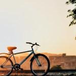 自転車保険の義務化の波が愛知県にも│罰則はどうなっている?