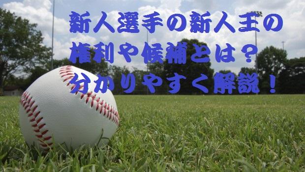 プロ野球の新人王を獲得する新人選手の権利や候補とは?分かりやすく解説!
