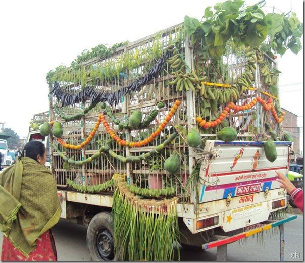 Chitwan_mahotsav_ratna_nagar (1)