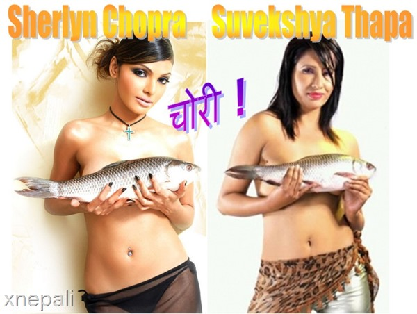 suvekshya thapa topless - stolen from bollywood
