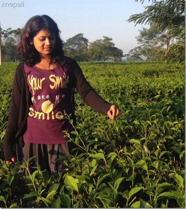 keki adhikari in tea garden