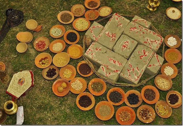 jharna bajrachary marriage