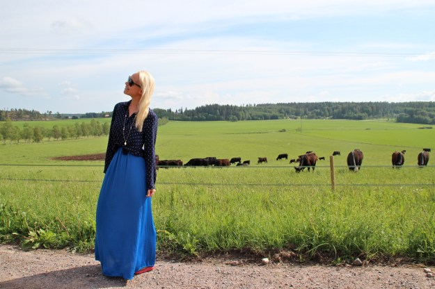 agnus farm