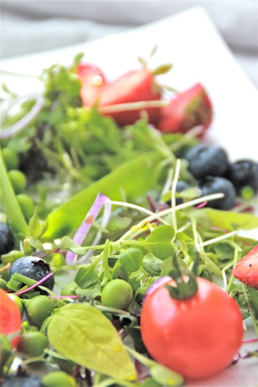 summer salad5