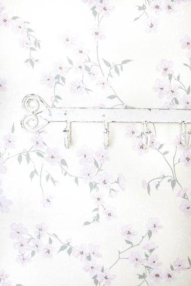 wallpaper (1 of 1)