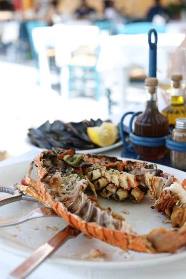 lobster3 (1 of 1)