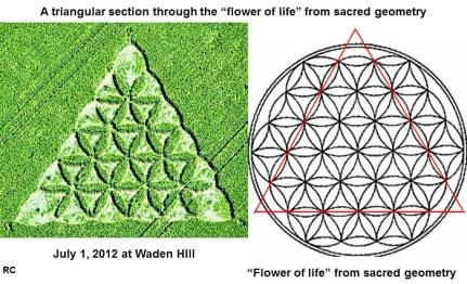 waden-flower1