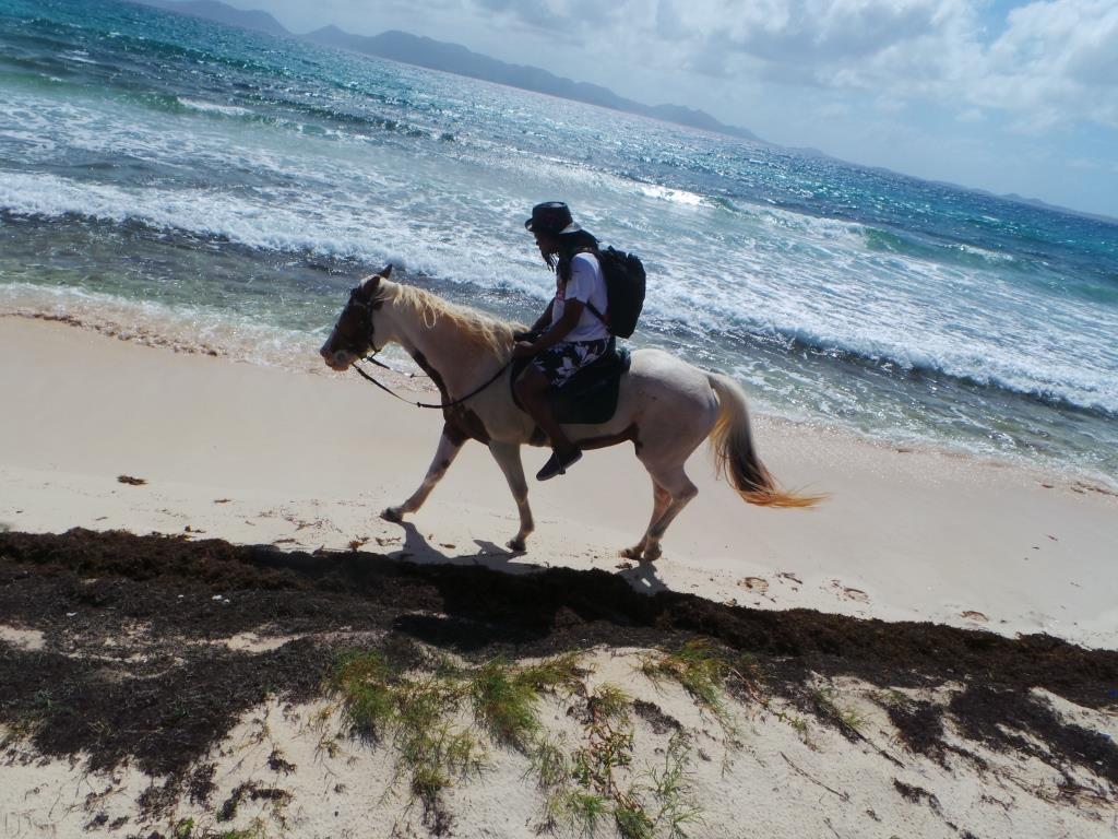 Anguilla 2015 (186)