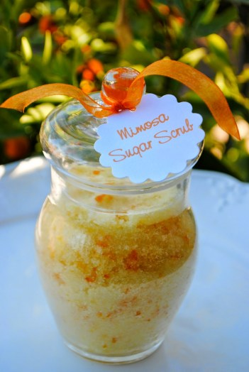Mimosa Sugar Scrub | DIY Homemade Body Scrubs
