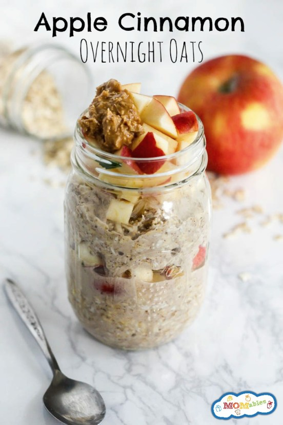 Apple Cinnamon Overnight Oats | Cold, creamy, overnight oats are perfect for busy mornings. These overnight oatmeal recipes are quick and easy breakfast recipes or a delicious snack on the go. Take advantage of seasonal fresh fruit, nuts, and seed to make these easy Overnight Oat Recipes! #xokatierosario #overnightoats #overnightoatmeals #easyoatmealrecipes