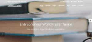 entetrepreneur wordpress theme