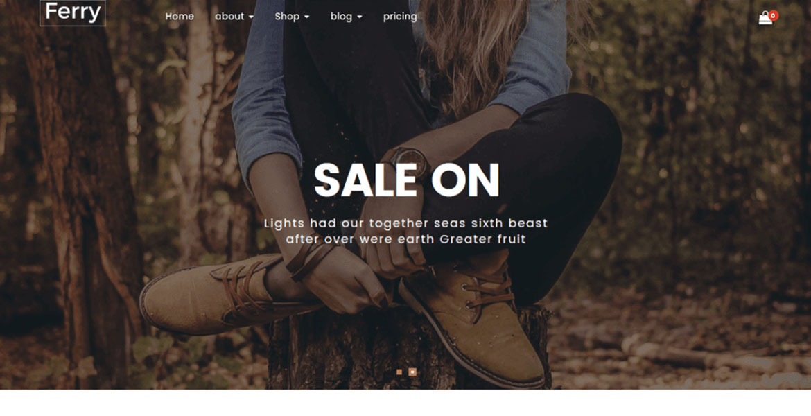 Free WooCommerce WordPress Themes