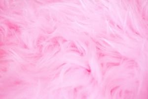 Faux Fur Favorites