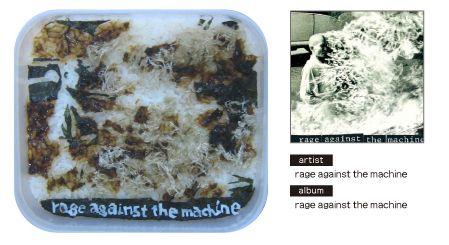 Rage Against The Machine - RATM