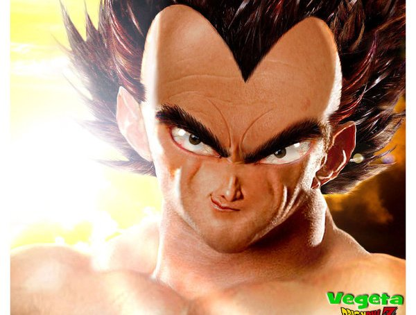 Dragonball Z: The Real Vegeta