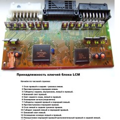 Bmw X5 E53 Lcm Wiring Diagram Air Ride E39 Manual E Books Libraryxenon High Beam Ok Low Not Working Page