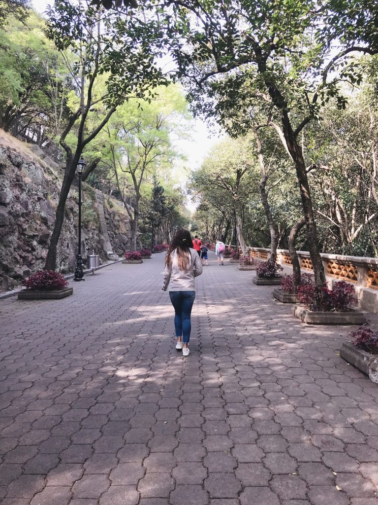 A Guide: One Week in Mexico City travel