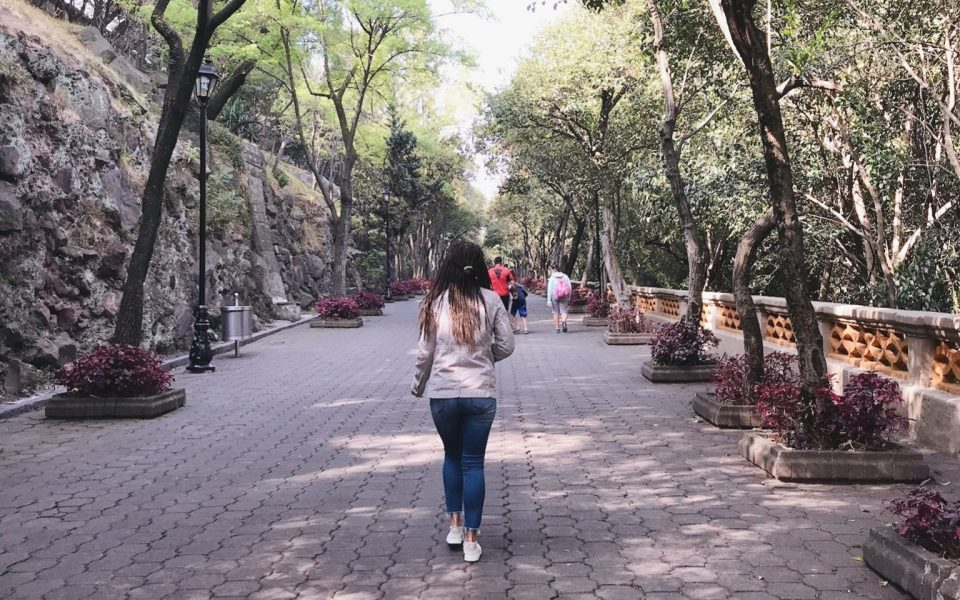 A Guide: One Week in Mexico City