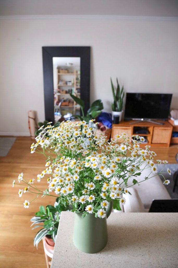 daisy arrangement xoxojackie