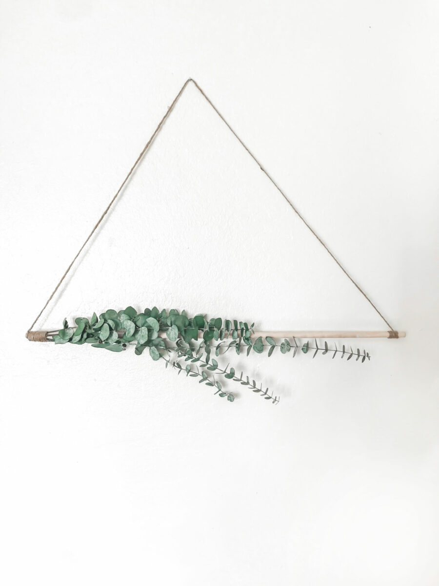 xoxojackie eucalyptus