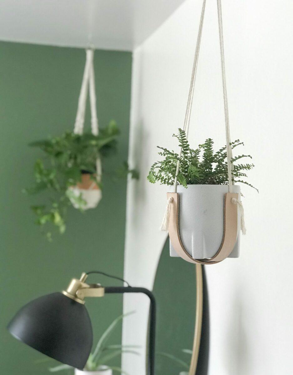 plant-hanger-xoxojackie5