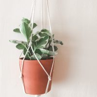 Five Minute DIY Macrame Plant Hanger