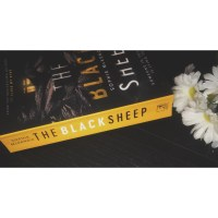 Book review: The black sheep by Sophie McKenzie