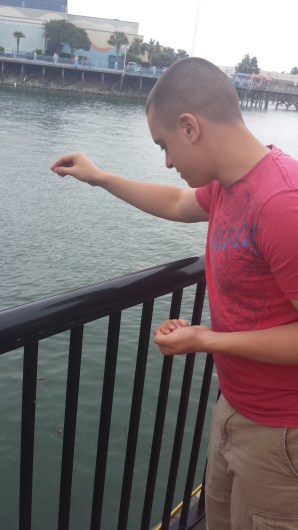 feeding fish 2