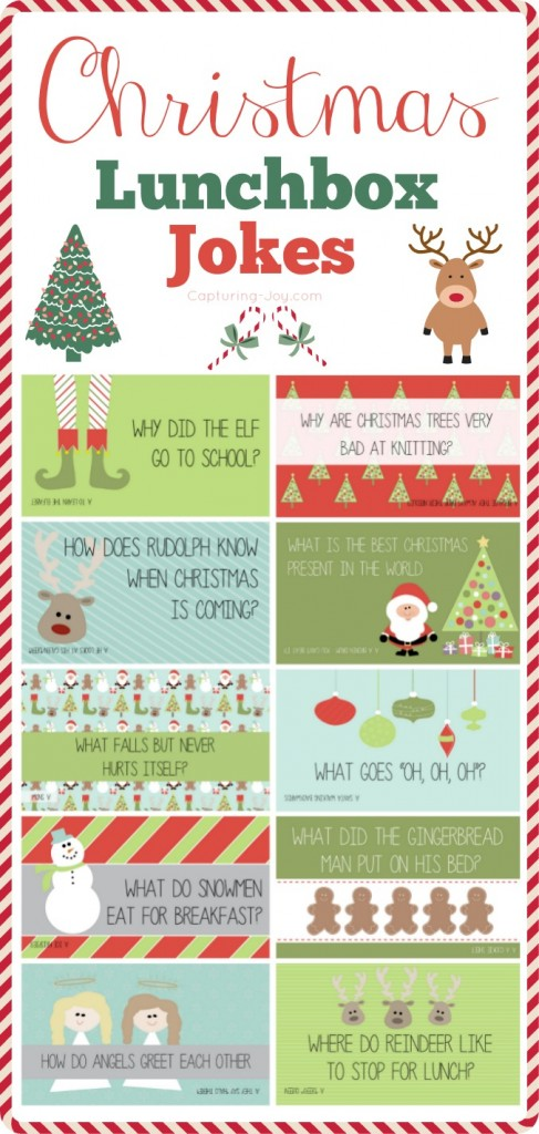 Christmas-Lunchbox-Jokes-487x1024