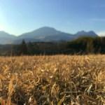 大分県久住高原のことも少しご紹介していきます。