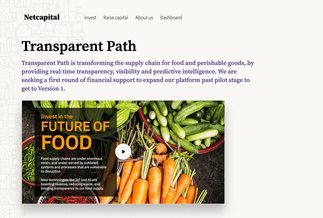 Photo of NetCapital page for Transparent Path