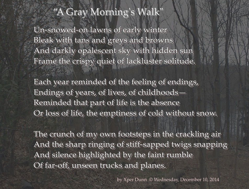 20141210XD-POEM_AGrayMorningsWalk_SMALL