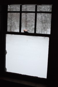 20140203XD-RoundDHouse(58thBDay) (7)