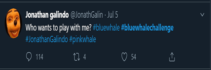 What is Pink Whale Challenge