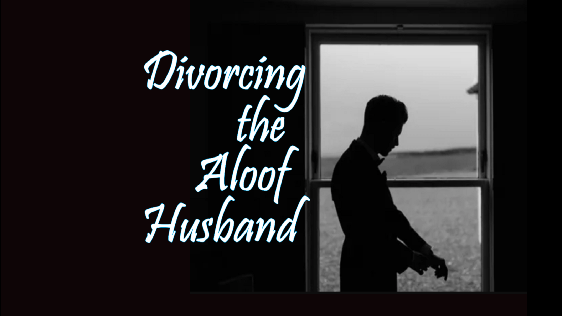 Divorcing the Aloof Husband Novel Cover image