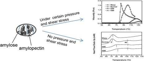 Effect of pressure with shear stress on gelatinization of