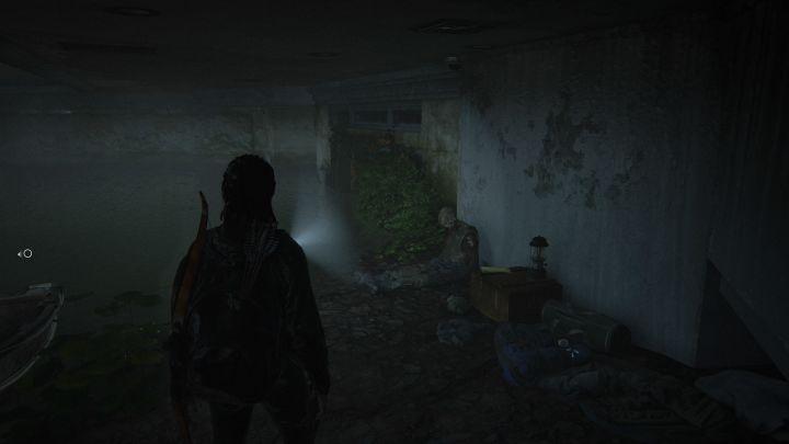 The Last of Us™ Part II_20200612235626