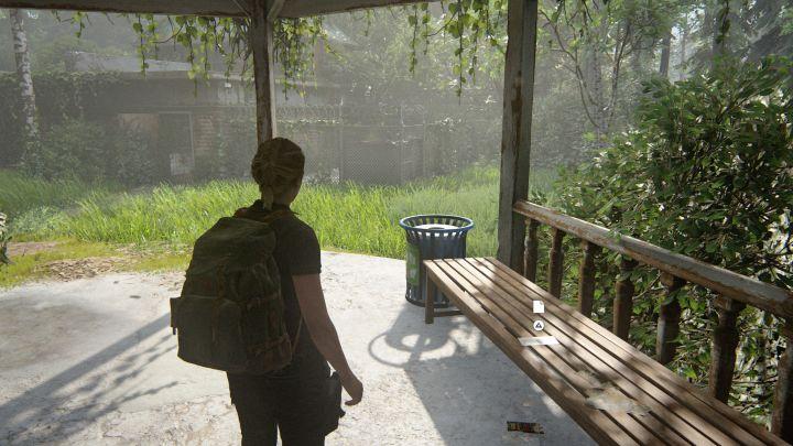 The Last of Us™ Part II_20200617150802