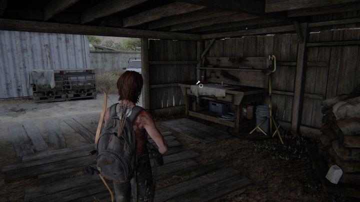 The Last of Us™ Part II_20200621174152