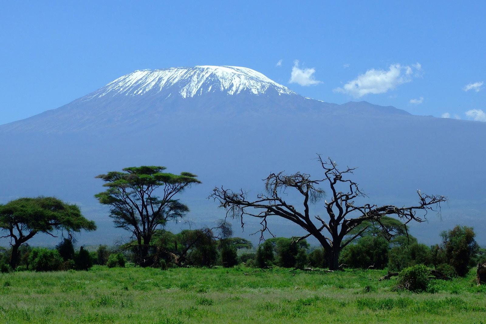 Mount Kilimanjaro Safari