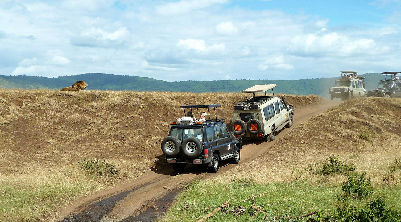 Car Hire / Self-drive Safari In Tanzania