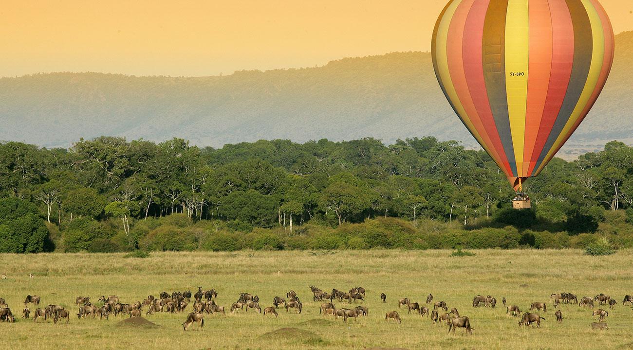 Early Morning Hot Air Balloon Safari