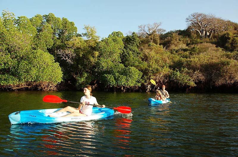African Boat Riding Safari