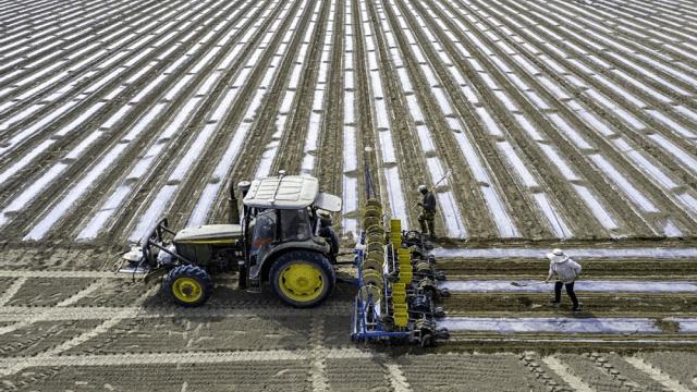 中国交出亮眼成绩:拿下沙特600亿沙漠高铁大单!日印高铁却烂尾